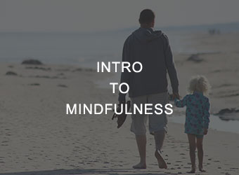 Intro to Mindfulness Mindfulness Workshop for Parents